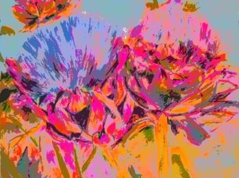 artichokes 1