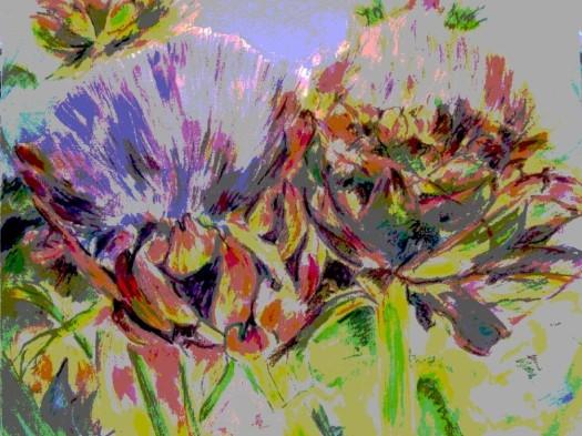 artichokes 2