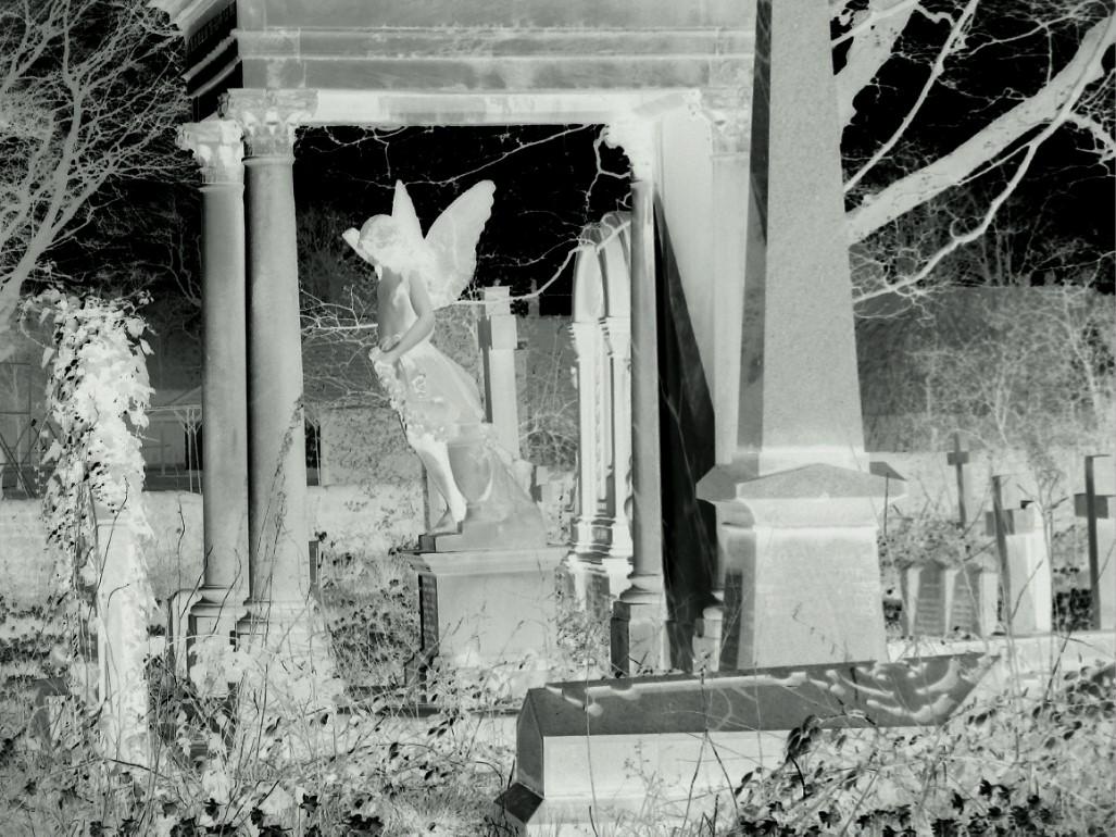 fairy ghost