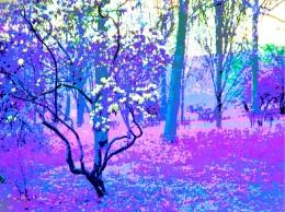 buscot blue fantasy