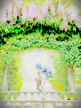 buscot wistaria 5