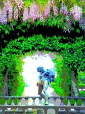 buscot wistaria 8