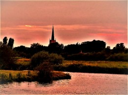 roseate lechlade