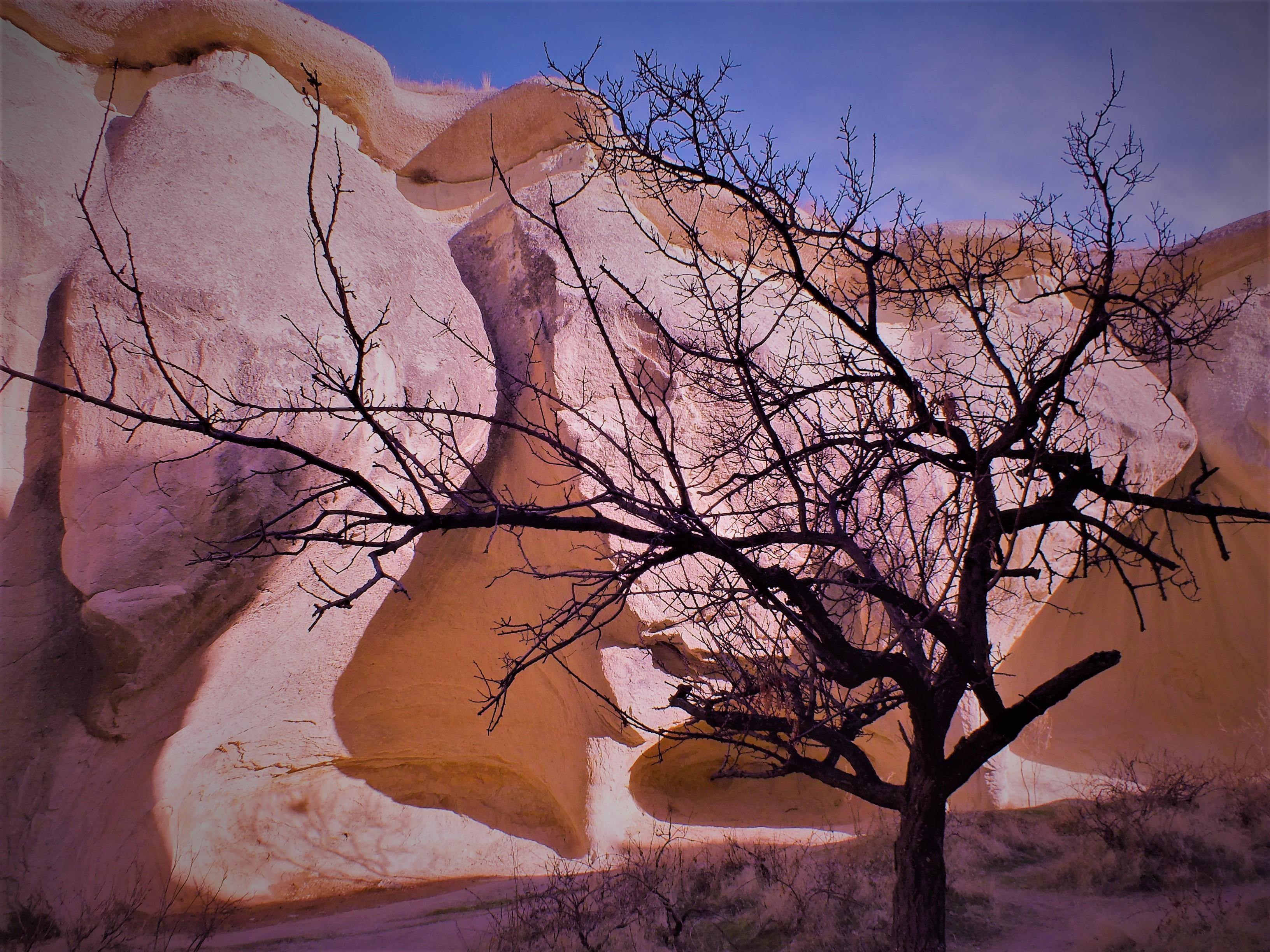 turkish mushroom cave 3