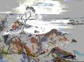 tasmanian bay 3 (2)
